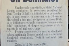 10 - Apel pentru înființarea Consiliilor Naționale Române în comitatul ( județul ) Sălaj
