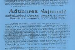 9 - Convocarea Adunării Naționale de la Alba Iulia