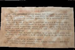 8 - Proclamația de la Darnița